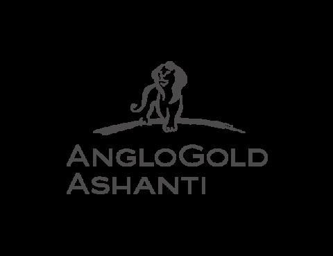 17-anglogold